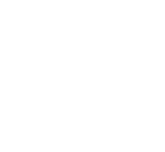 The Amputees and Families Support Group Qld